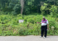 First organized Black cemetery in Chattanooga will soon be recognized
